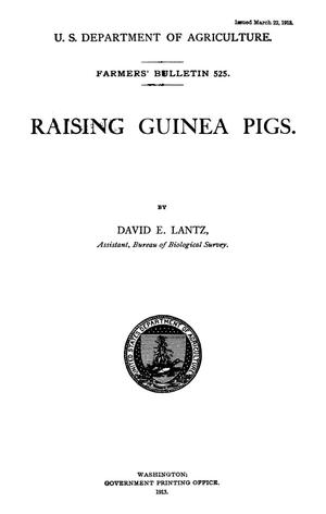 Primary view of Raising Guinea Pigs