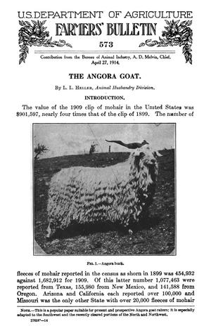 Primary view of object titled 'The Angora Goat'.