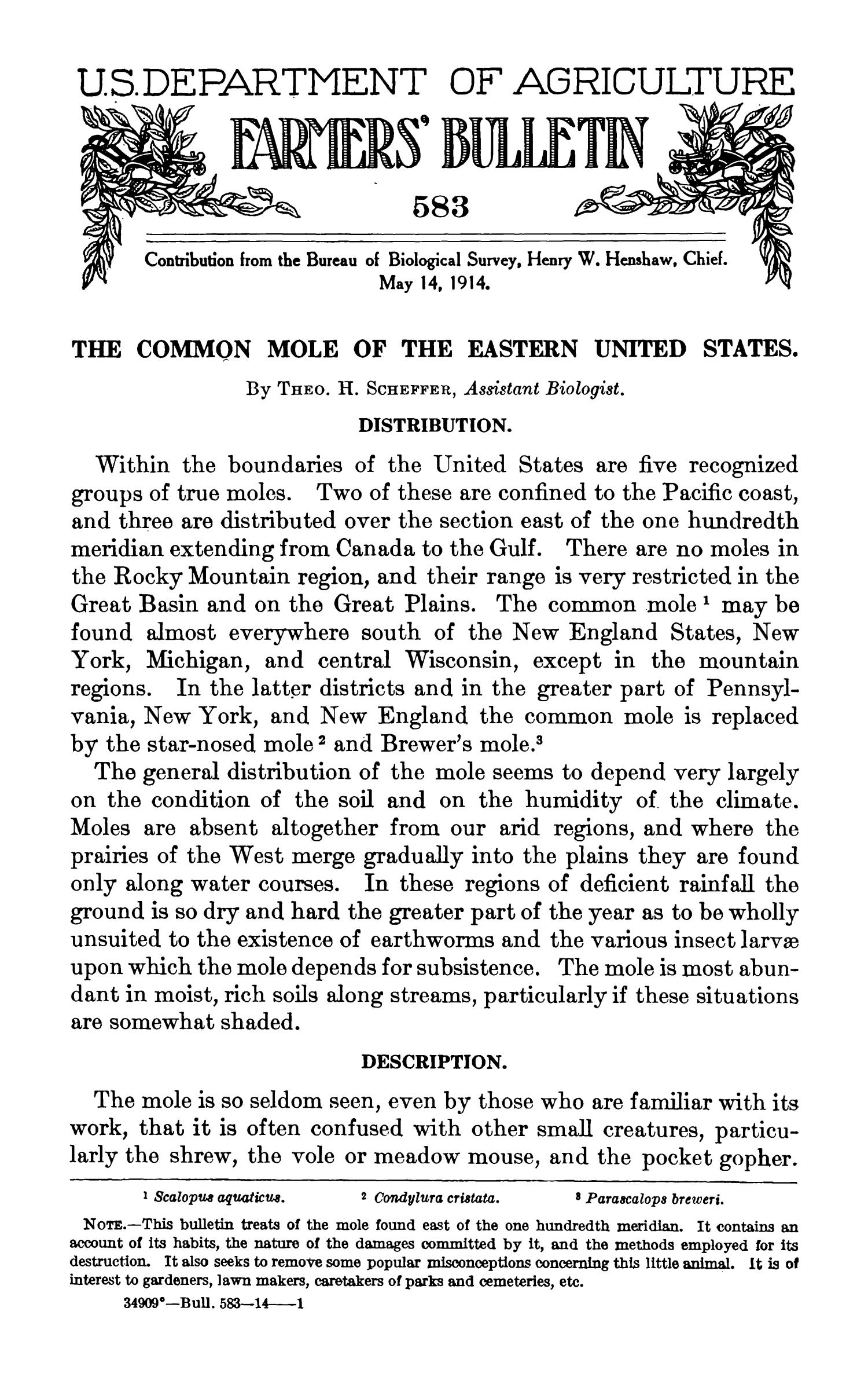 The Common Mole of the Eastern United States                                                                                                      Title Page