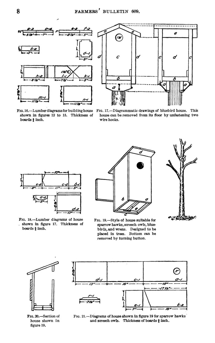 bird houses and how to build them  page 8 unt digital blue bird parts blue bird parts blue bird parts blue bird parts