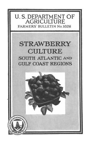 Strawberry Culture: South Atlantic and Gulf Coast Regions