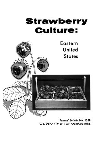 Primary view of object titled 'Strawberry Culture: Eastern United States'.