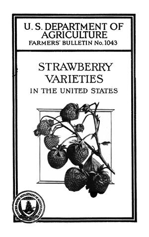 Primary view of object titled 'Strawberry Varieties in the United States'.
