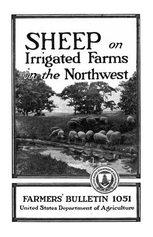 Primary view of object titled 'Sheep on Irrigated Farms in the Northwest'.