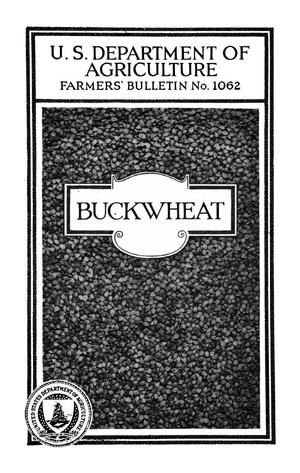 Primary view of object titled 'Buckwheat'.