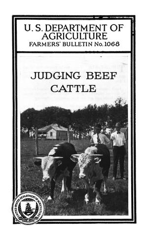 Primary view of object titled 'Judging Beef Cattle'.