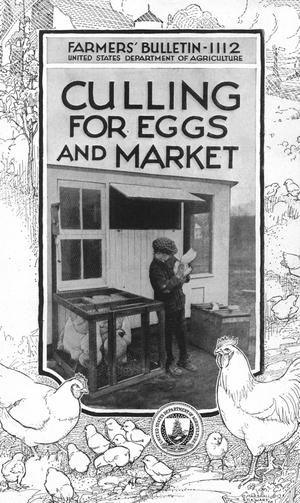 Primary view of object titled 'Culling for Eggs and Market'.