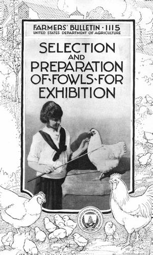 Primary view of object titled 'Selection and Preparation of Fowls for Exhibition'.