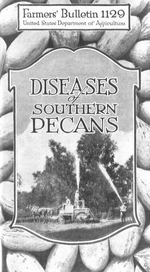 Primary view of object titled 'Diseases of Southern Pecans'.