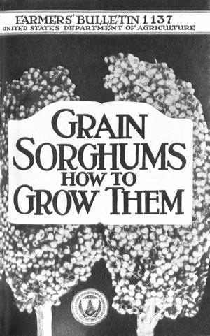 Primary view of object titled 'Grain Sorghums: How to Grow Them'.