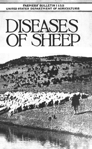 Primary view of object titled 'Diseases of Sheep'.