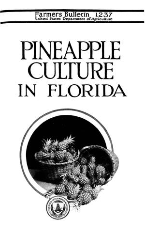 Primary view of object titled 'Pineapple Culture in Florida'.