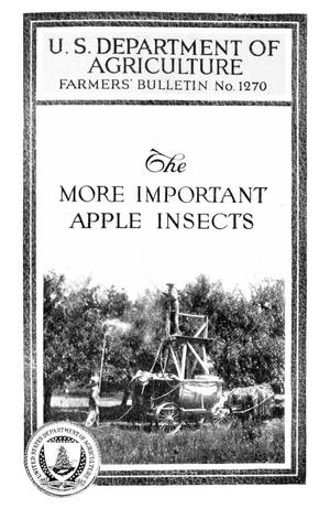 Primary view of object titled 'The More Important Apple Insects'.