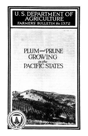 Primary view of object titled 'Plum and Prune Growing in the Pacific States'.