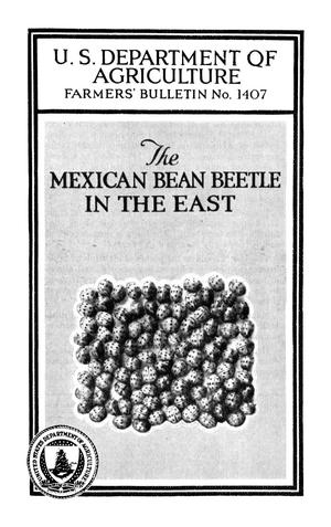 Primary view of object titled 'The Mexican Bean Beetle in the East'.