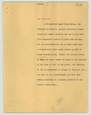 Primary view of object titled '[News Script: Snankes]'.