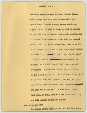 Primary view of object titled '[News Script: Bananas]'.