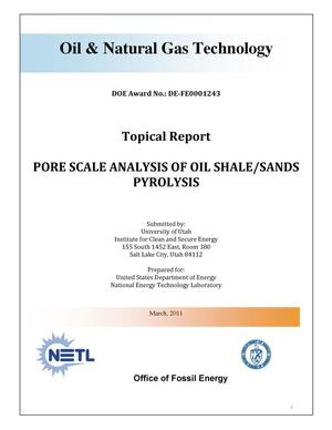 Primary view of object titled 'Pore Scale Analysis of Oil Shale/Sands Pyrolysis'.
