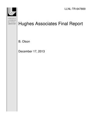 Primary view of object titled 'Hughes Associates Final Report'.