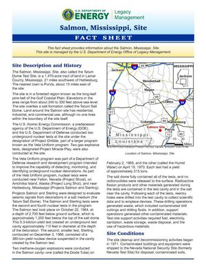 Primary view of object titled 'Salmon, Mississippi Fact Sheet'.