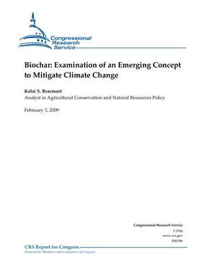 Biochar: Examination of an Emerging Concept to Mitigate Climate Change