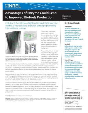 Primary view of object titled 'Advantages of Enzyme Could Lead to Improved Biofuels Production (Fact Sheet)'.