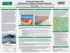 Primary view of object titled 'Saving the Salton Sea: Alternatives to Reduce Harmful Pollutants'.