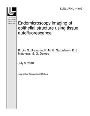 Primary view of object titled 'Endomicroscopy imaging of epithelial structure using tissue autofluorescence'.