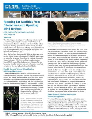 Primary view of object titled 'Reducing Bat Fatalities From Interactions with Operating Wind Turbines (Fact Sheet)'.