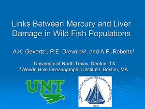 Primary view of object titled 'Links Between Mercury and Liver Damage in Wild Fish Populations'.