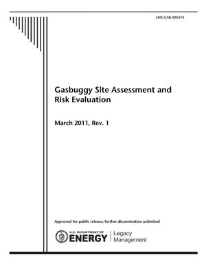 Primary view of object titled 'Gasbuggy Site Assessment and Risk Evaluation'.