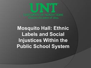 Primary view of object titled 'Mosquito Hall: Ethnic Labels and Social Injustices Within the Public School System'.