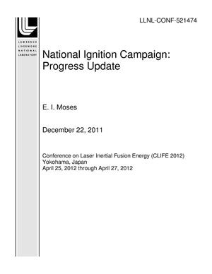 Primary view of object titled 'National Ignition Campaign: Progress Update'.