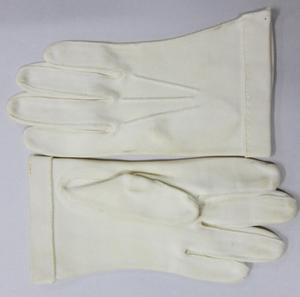 Primary view of object titled 'Gloves'.