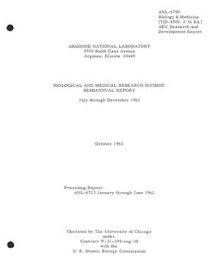 Primary view of object titled 'BIOLOGICAL AND MEDICAL RESEARCH DIVISION SEMIANNUAL REPORT, JULY-DECEMBER 1962'.