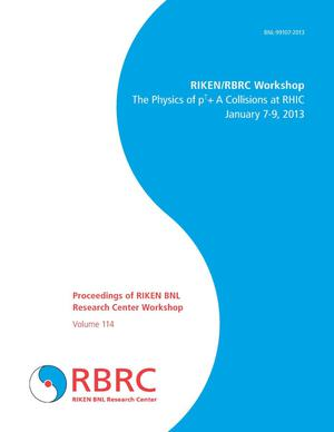 Primary view of object titled 'Proceedings of RIKEN BNL Research Center Workshop: The Physics of p(up arrow)+A Collisions at RHIC'.