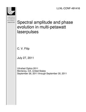 Primary view of object titled 'Spectral amplitude and phase evolution in multi-petawatt laserpulses'.