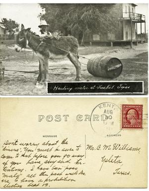 Primary view of object titled '[Postcard of a donkey hauling water]'.