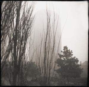 Primary view of object titled '[Foggy building with trees]'.