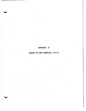 Primary view of object titled 'Dow Chemical USA Report - Appendix B'.