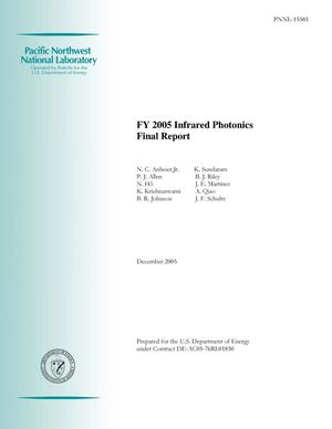 Primary view of object titled 'FY 2005 Infrared Photonics Final Report'.