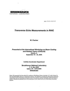 Primary view of object titled 'TRANSVERSE ECHO MEASUREMENTS IN RHIC.'.