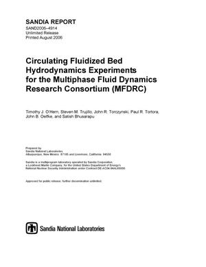 Primary view of object titled 'Circulating fluidized bed hydrodynamics experiments for the multiphase fluid dynamics research consortium (MFDRC).'.
