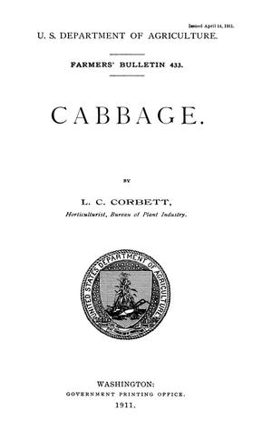 Primary view of object titled 'Cabbage'.