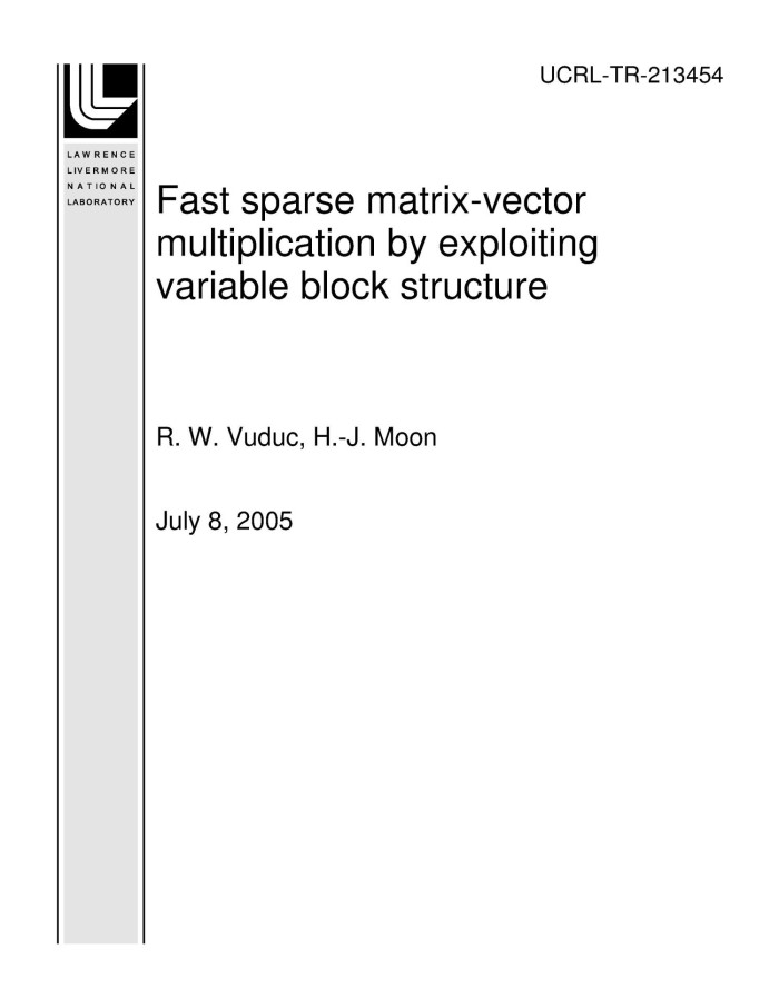Fast sparse matrix-vector multiplication by exploiting