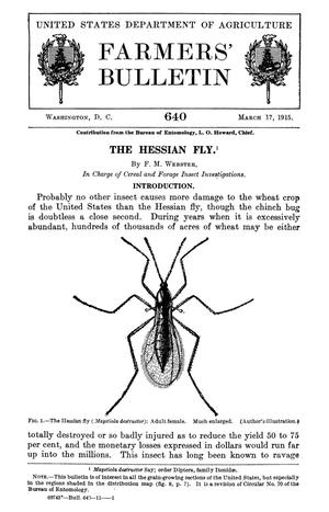 Primary view of object titled 'The Hessian Fly'.