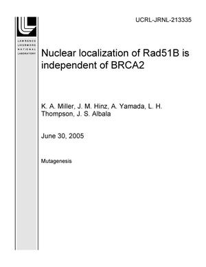 Primary view of object titled 'Nuclear localization of Rad51B is independent of BRCA2'.