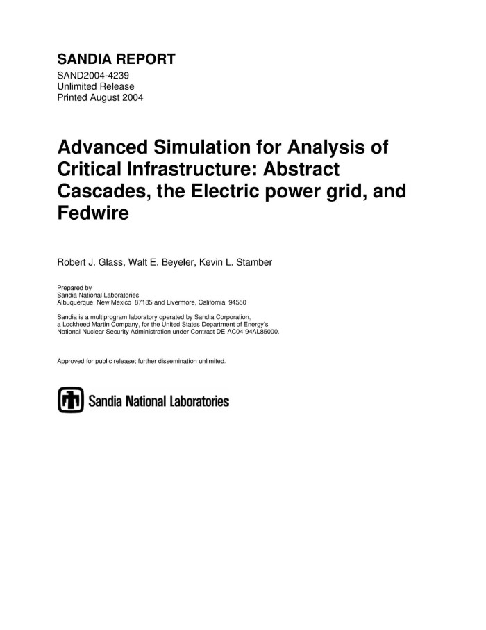 Advanced simulation for analysis of critical infrastructure