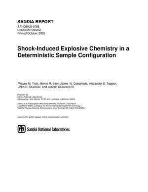 Primary view of object titled 'Shock-induced explosive chemistry in a deterministic sample configuration.'.