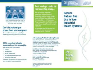 Primary view of object titled 'Reduce Natural Gas Use in Your Industrial Steam Systems: Ten Timely Tips'.